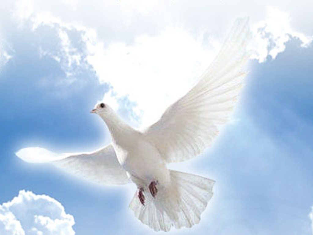 Ben noto TRIDUO ALLO SPIRITO SANTO | Maria Regina dell'universo  HA45