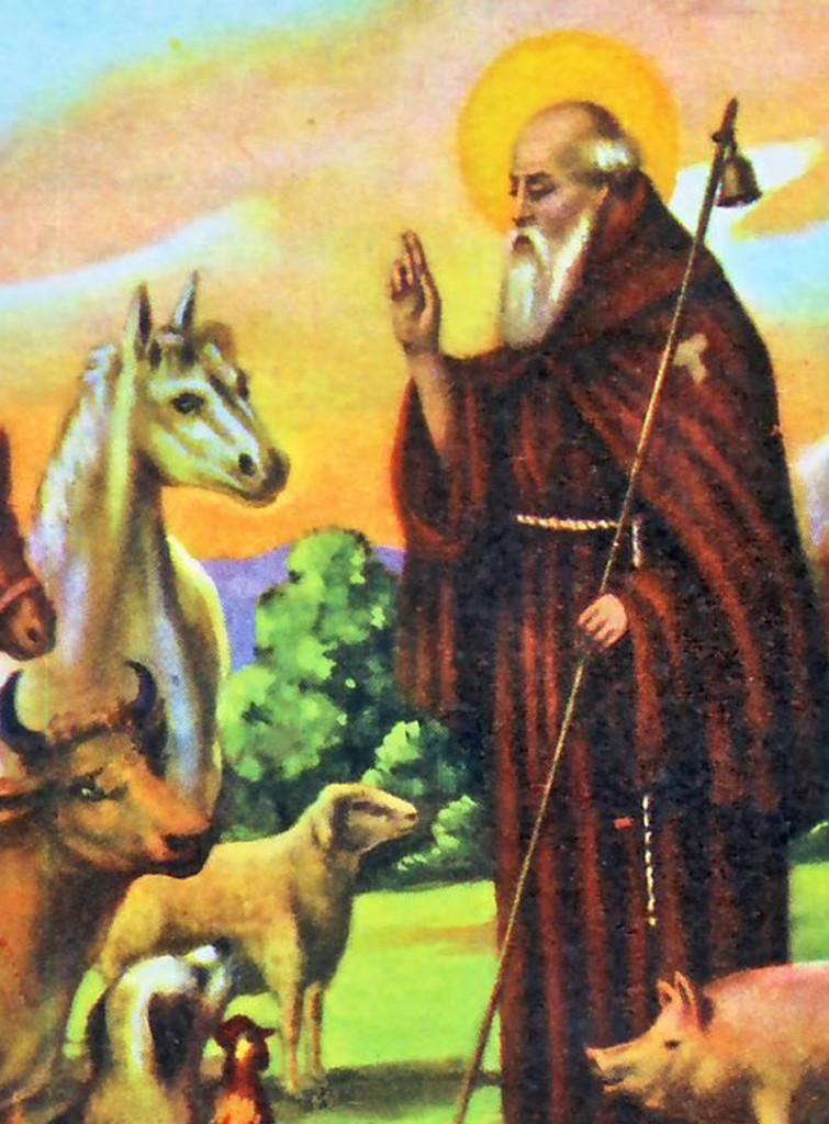 antonio-abate