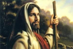 pastore (5)