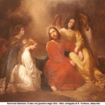 preghiera ulivi