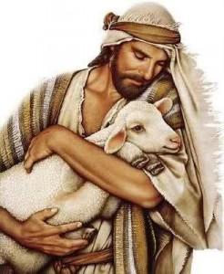 pastore (3)