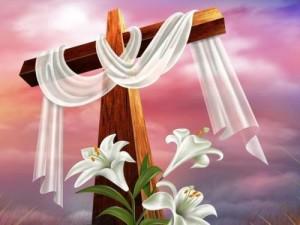 croce (6)