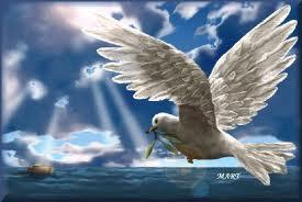 spirito Santo (5)