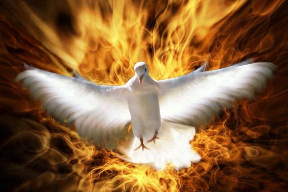 spirito Santo 1