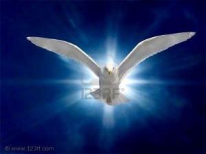 spirito-santo-21