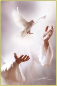 spirito santo6
