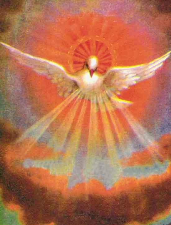Lo Spirito Santo dans immagini sacre spirito_santo