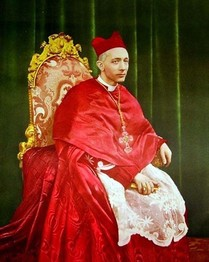 il-cardinale-alfredo-ildefonso-schuster