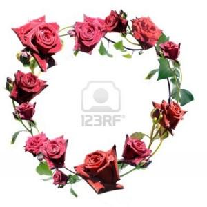 corona-di-rose