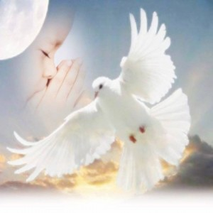 spirito santo5
