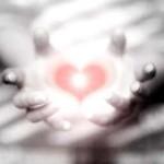 cuore (7)