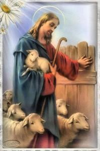 pastore16