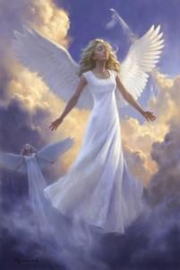 angeli2