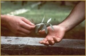 pace e perdono