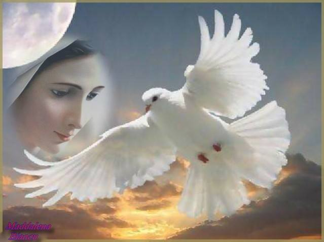 spirito santo4