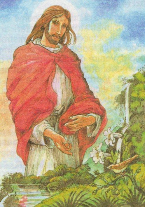 provvidenza divina