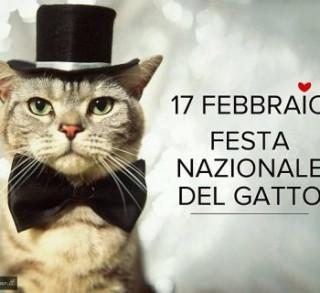 festa-del-gatto