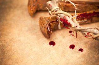 sangue di cristo